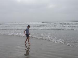 Taking a walk on the beach